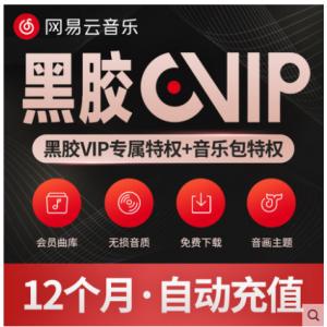 【官方直冲秒到】网易云黑胶年卡 音乐VIP会员豪华12个月 (极速1-60秒)