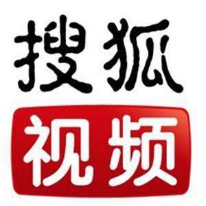 【自动充】搜狐视频会员一年 官方秒到 无限叠加 单次购买数量 1