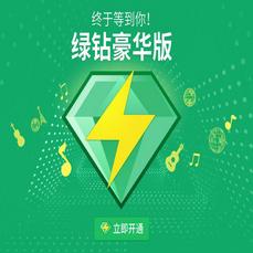 豪华绿年费+音乐包-无售后