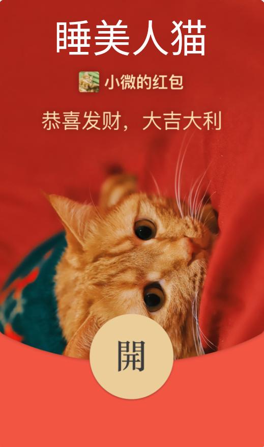 【红包封面】睡美人猫