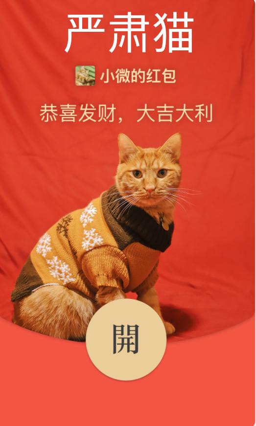 【红包封面】严肃猫
