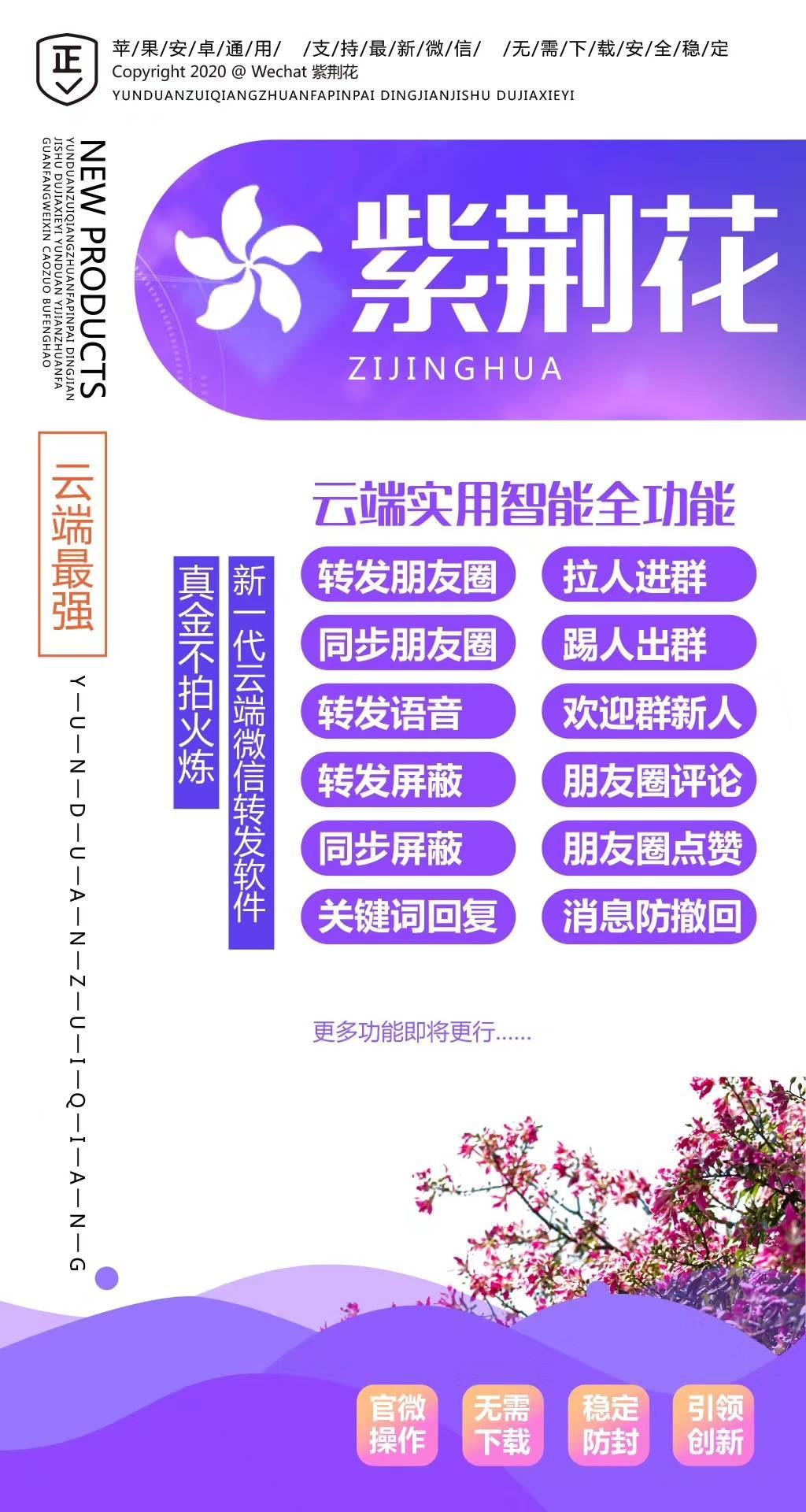 【紫荆花月卡】紫罗兰
